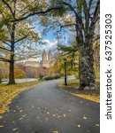 central park  new york city in... | Shutterstock . vector #637525303
