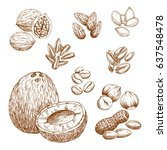 nuts and nutrition seeds sketch ... | Shutterstock .eps vector #637548478