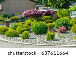 flowers  nicely trimmed bushes... | Shutterstock . vector #637611664