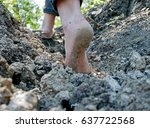 Barefoot Hiker Girl In The...