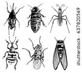 insect stipple drawing set... | Shutterstock .eps vector #637820569