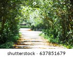 Blurred Of Tree Tunnel At Sunn...