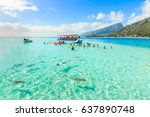papeete  french polynesia   may ... | Shutterstock . vector #637890748