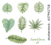 hand drawn tropical palm leaves ... | Shutterstock .eps vector #637941718