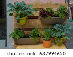 Vertical Gardening With A...