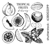 vector hand drawn exotic fruits.... | Shutterstock .eps vector #638002099