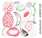 vector hand drawn exotic fruits.... | Shutterstock .eps vector #638002120