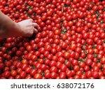 hand grab a tomato | Shutterstock . vector #638072176