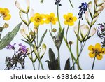 pressed and dried flowers...   Shutterstock . vector #638161126