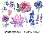 Stock photo set of watercolor flowers on isolated background anemone bells lavender lotus rose flower 638474260