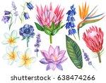 set of watercolor flowers on... | Shutterstock . vector #638474266