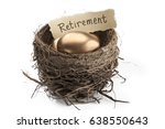 Golden Retirement Nest Egg