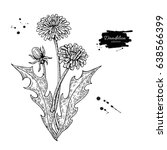 dandelion flower vector drawing ... | Shutterstock .eps vector #638566399