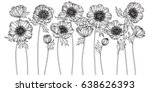 anemone flowers drawn and... | Shutterstock .eps vector #638626393