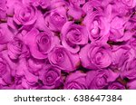 beautiful rose background with... | Shutterstock . vector #638647384