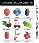 flat design berries collection... | Shutterstock .eps vector #638704174