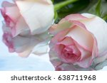 beautiful roses reflected in... | Shutterstock . vector #638711968