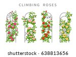 Stock vector vector flat illustration of climbing roses on garden trellis colored icons of vertical gardening 638813656
