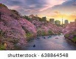 cherry blossom or sakura japan... | Shutterstock . vector #638864548