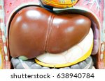 liver anatomy model for medical ... | Shutterstock . vector #638940784