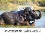 Elephant Bathing In River Wate...