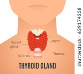 thyroid gland diagram. thyroid... | Shutterstock .eps vector #639174328
