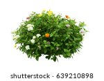 flower bush tree isolated with... | Shutterstock . vector #639210898