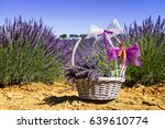 lavender field in south of... | Shutterstock . vector #639610774