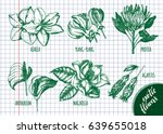 ink hand drawn set of tropical... | Shutterstock .eps vector #639655018