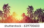 tropical beach summer... | Shutterstock . vector #639700603