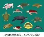 Various Sea Turtle Poses Vecto...
