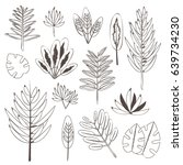 botanic set of palm tree leaves ... | Shutterstock .eps vector #639734230