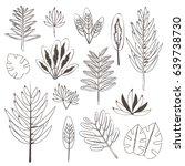 botanic set of palm tree leaves ... | Shutterstock . vector #639738730