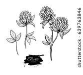 clover flower vector drawing... | Shutterstock .eps vector #639763846