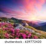 summer landscape. flowers of... | Shutterstock . vector #639772420