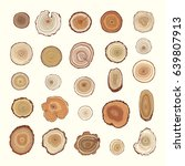 Tree Rings Vector Color Graphic ...