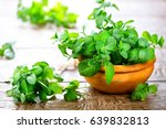 Mint. Bunch Of Fresh Green...