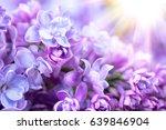 lilac flowers bunch violet art...   Shutterstock . vector #639846904