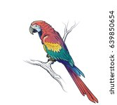 Red Macaw Parrot Ara...