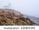 Lighthouse Along Coastline...