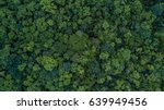 Aerial Top View Forest Tree ...