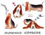 Basset Hound Character  Dog...