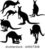 kangaroo   vector   Shutterstock .eps vector #64007308