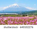 Shizuoka  Japan   May 05  2017  ...
