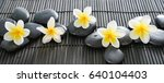 frangipani with black stones on ... | Shutterstock . vector #640104403