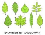 hand drawn set of green leaves... | Shutterstock .eps vector #640109944