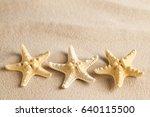 three starfish on sand | Shutterstock . vector #640115500