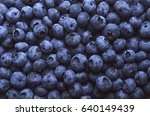 blueberries | Shutterstock . vector #640149439