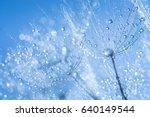 abstract dandelion flower seeds ... | Shutterstock . vector #640149544