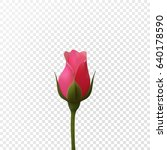 beautiful pink rose on a...   Shutterstock .eps vector #640178590
